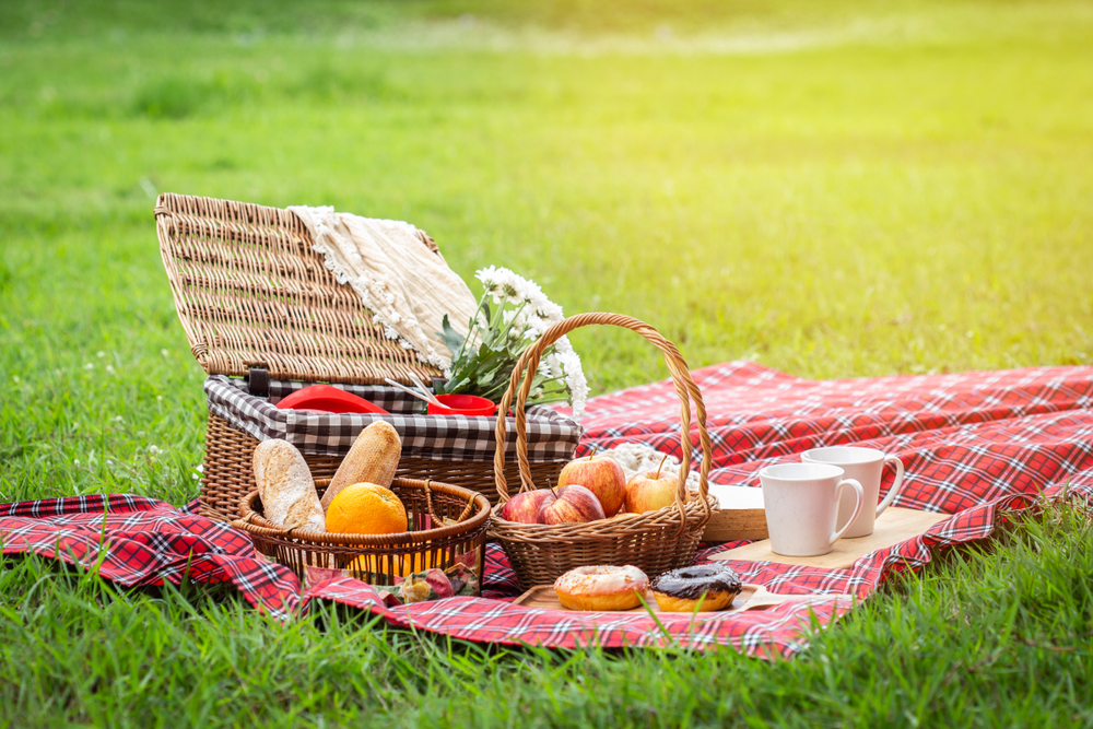 En god picknick ute i naturen